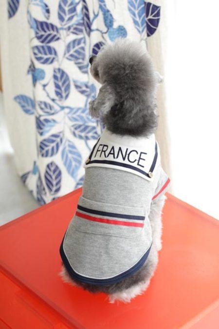 ラメミニ裏毛セーラー(FRANCE)刺繍(SAD20590-79)50%オフ